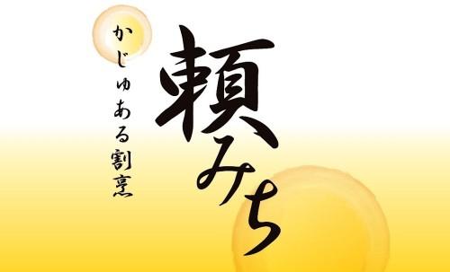 yorimichi-fin